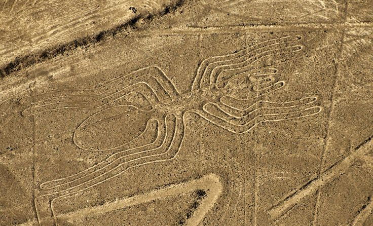 PERU-NAZCA LINES-SPIDER