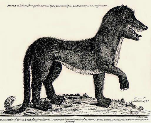 Gevaudanwolf